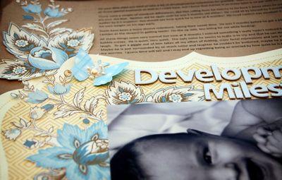 Development Milestones Textural