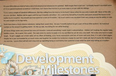Development Milestones Text