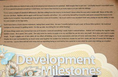Development Milestones Text