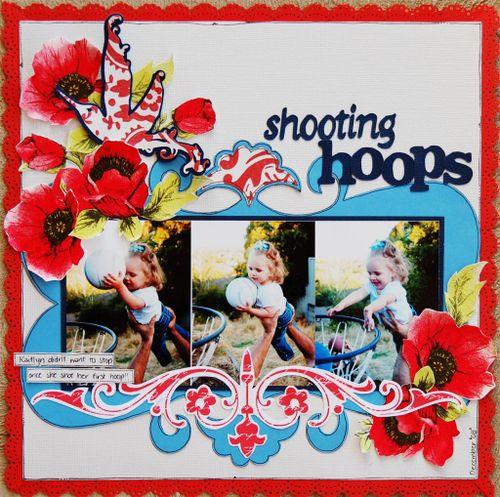 Dtcombo Shooting Hoops